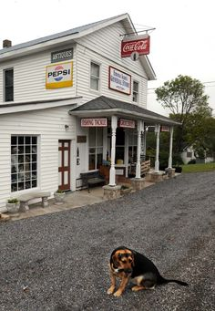 112-year-old general store, antique shop thrive - News - The Charleston Gazette - West Virginia News and Sports -
