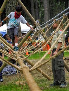 cub scout survivor camporee