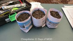 31 Days of MOO No. 2 - Newspaper Seed Pots - Debt Free, Cashed Up and Laughing - The Cheapskates way to living the good life