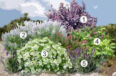 Home Landscaping, Vegetable Garden, Floral Wreath, Wreaths, Landscape, Green, Nature, Flowers, Inspiration