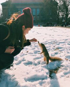 U-M has some of the friendliest squirrels around. Bring them acorns, and you'll be their next best friend. University Of Michigan, Michigan Wolverines, College Fun, Ann Arbor, Squirrels, Best Friends, Public, America, City