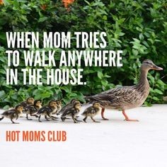 trying to walk with kids Haha Funny, Funny Memes, Lol, Hot Moms Club, Mommy Humor, Love My Boys, Parenting Humor, Mom Quotes, Funny Kids