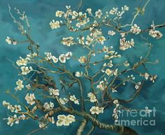 almond, blossoms, reproduction, van gogh reproduction, flowers, work of masters,