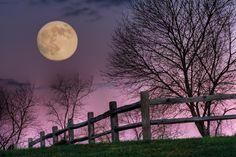 I love the purple sky with the moon