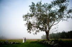 Maine Wedding at Saltwater Farm by emilie inc. SEE MORE IMAGES => loveandlobster.com #maine #wedding