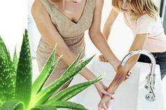 El Aloe vera ejerce un efecto calmante y reconstituyente en los tejidos, acelerando la cicatrización de las quemaduras.  SIGUE LEYENDO EN http://alimentosparacurar.com/remedios-caseros/n/189/el-aloe-vera-para-curar-las-quemaduras.html