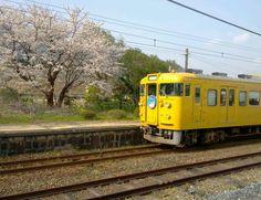 富海駅にて(2012年4月)  Tonomi station,Hofu,Yamaguchi,Japan  Apr.2012