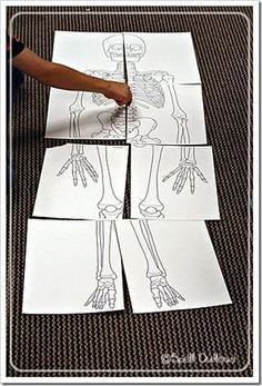 Montessori Monday - Montessori-Inspired Skeleton Unit | LivingMontessoriNow.com