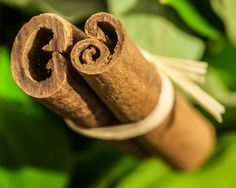 """Healthy fat burning spices - cinnamon Try a Low-Low-Fat Fake-Danish Pastry Recipe, mix cinnamon in with a healthy spread, like Olivio or Smart Balance, and a little honey and wow, it's a GREAT topping. for a piece of whole grain toast or English muffin. YUM!,"""" says Judy, RD/LDN, who happens to be a Certified Diabetes Educator and Director of Wellness and Diabetic Care at Manet."""