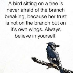 Wise Word from bird