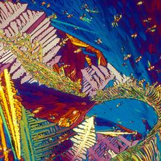 Your Favorite Booze Under The Microscope
