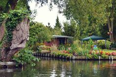 Floating Farms & Gardens, Les Hortillonnages, Amiens, France | Love in a Suitcase
