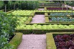 Cum să dotați un teren de uz casnic Diy Gazebo, Backyard Gazebo, Backyard Garden Design, Diy Garden, Garden Bed Layout, Backyard Layout, Garden Beds, The Pleasure Garden, Small Vegetable Gardens