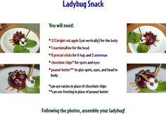 "DeniseFleming.com: ACTIVITIES: Ladybug Snack Use with ""Time to Sleep."""