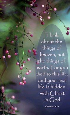 Colossians 3:2-3