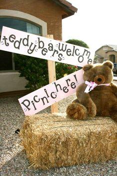 Teddy Bear Picnic | CatchMyParty.com