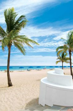 Fort Lauderdale Hotels, Things to Do