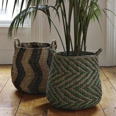 love these rattan baskets - so much homier than those terrible black plastic plant-holders they come in.
