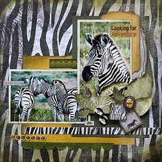 Great for my Disney Kidani zebra layout pics