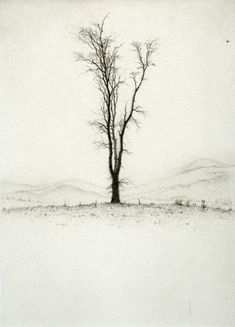 Graphic Studio Dublin: Lars Nyberg: In the Filed Drypoint Etching, Encaustic Art, Realistic Drawings, Stencil Painting, Gravure, Tree Art, Landscape Paintings, Printmaking, Photo Art