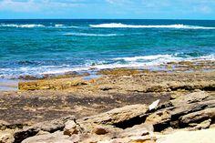 Tide Pools by Turtle Bay SEIS, via Flickr Turtle Bay Resort, North Shore Oahu, Tide Pools, Beach, Water, Outdoor, Gripe Water, Outdoors, The Beach