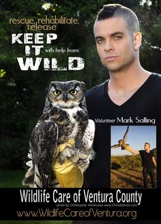 Mark Salling of Glee with a rescue Owl. This PSA appears in magazines and on the web. Please share