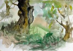 Olive Trees, watercolor on paper