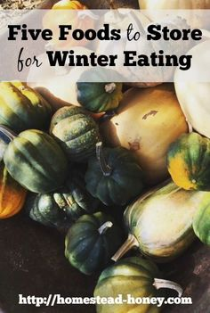 Stock up on local, organic food for winter eating by buying these five crops in bulk, and storing them in your home, basement, or root cellar! | Homestead Honey