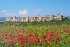 Immagini della cinta muraria Castles In England, Iron Age, Medieval Castle, Siena, Tuscany, Florence, Monument Valley, Vineyard, Places