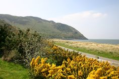 """""""Nestled in the stunning Conwy valley, with the majestic mountains of Snowdonia as the backdrop. Caravans For Sale, Snowdonia, North Wales, Darwin, Resort Spa, Lodges, Backdrops, Environment, Country Roads"""