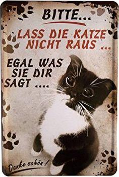 Blechschild kleine Katze Cats 20 x 30cm Reklame Retro Blech 918