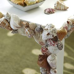 I had no idea when I moved to the beach that I'd be scraping barnacles and clams off the patio furniture.