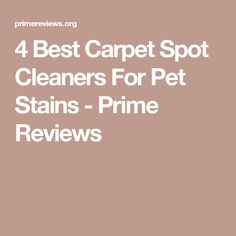 spotclean anywhere portable carpet cleaner 97491