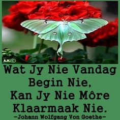 Afrikaans, Embedded Image Permalink, Tart, Poems, Lyrics, Quotes, Beautiful, Quotations, Pie