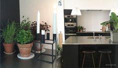 Lines nybyggerhjem: 'Nogen bruger penge på ferie – vi køber designerstole' - billede 5