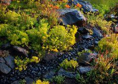 Aguafina   Dow Jones, Mountains, Nature, Plants, Travel, Naturaleza, Viajes, Destinations, Plant
