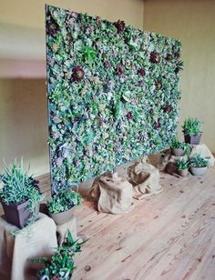 Succulent wall backdrop for this lovely eco-chic wedding!