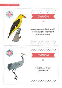 Dzień Ptaków Wędrownych – pakiet edukacyjny