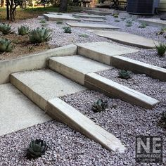 This is uber minimal but what do you think of having some sort of architectural design elements in the garden? We can have similar concrete lines in the berm in the front yard, staggered.