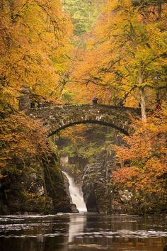 #autumn colours of The Hermitage in #Perthshire (8) Twitter