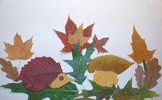 Natur Collage Herbst Saison Kinder