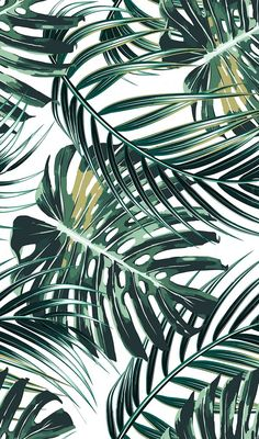 Mint Green Wallpaper Iphone, Leaves Wallpaper Iphone, Green Leaf Wallpaper, Plant Wallpaper, Tropical Wallpaper, Cellphone Wallpaper, Aesthetic Iphone Wallpaper, Wallpaper Backgrounds, Leaf Art