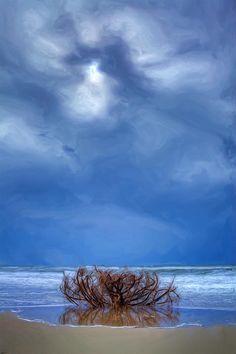 Oracoke Island on de Outer Banks of North Carolina_ USA