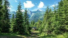 Peaks Forest Way Resting Place HD Desktop Wallpaper Mountain Wallpaper, Nature Wallpaper, Hd Wallpaper, Funny Cat Faces, Tatra Mountains, Hand Tufted Rugs, Nature Prints, Background S, Nature Pictures