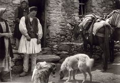 Frederic Francois Boisson was the first foreign photographer in Greece. He spent three decades taking photos of Greece's villages and landscapes. Greek Men, Old Greek, Greek Life, Old Pictures, Old Photos, Vintage Photos, Greece People, Empire Ottoman, Greece Photography
