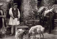 Λαγκάδια Αρκαδίας.  107 αριστουργηματικές φωτογραφίες μιας απλής, ήσυχης Ελλάδας (1903-1930) - RETRONAUT - Lightbox - LiFO