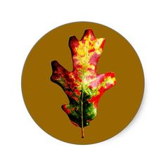Colorful Autumn Oak Leaf Round Stickers