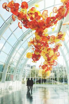 seattle chihuly   observant nomad