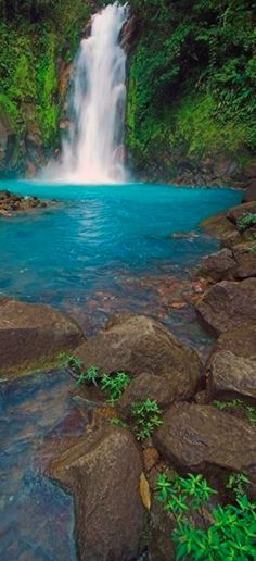 The turquoise blue Rio Celeste flowing through Tenorio Volcano National Park in…