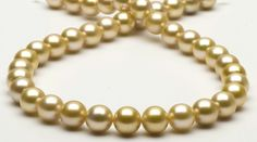 Golden South Sea pearls #south sea pearls